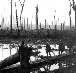 Chateau_Wood_Ypres_1917 (1)
