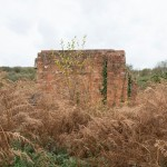 Ruined walls