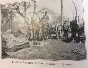 Field Ambulance limber wagon in bivouac