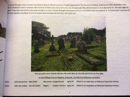Chris Berry leaflet graves